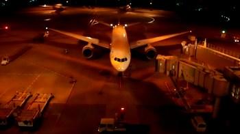 羽田空港夜間マーシャラー03.jpg