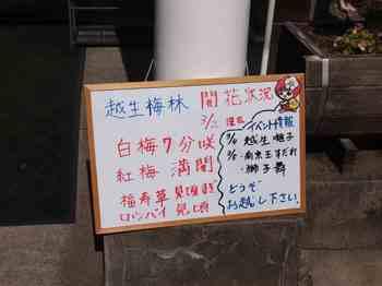 越生駅01.jpg